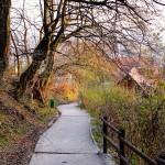MatevzH_ljubljana12-2427