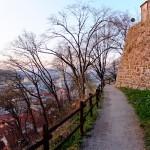 MatevzH_ljubljana12-2440