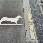 Day 18: Beware! Dachshund crossing!
