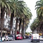MatevzH_Casablanca-5978