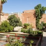 MatevzH_marrakesh-6226