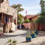 MatevzH_marrakesh-6345