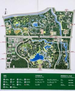 MatevzH_Beijing_runaround-3357