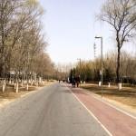 MatevzH_Beijing_runaround-3362