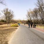 MatevzH_Beijing_runaround-3364