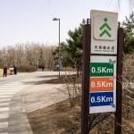MatevzH_Beijing_runaround-3396
