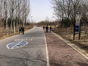 MatevzH_Beijing_runaround-3404