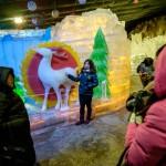 MatevzH_ice festival-3783