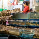 MatevzH-peking_market_nov16-6169